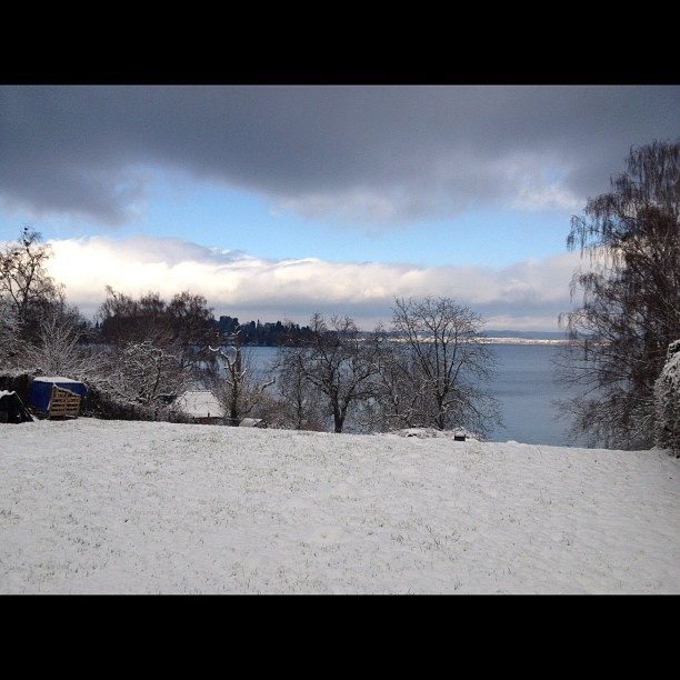 See am Bodensee